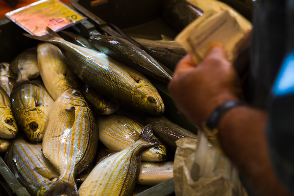 Money changes hands at Split's fish market