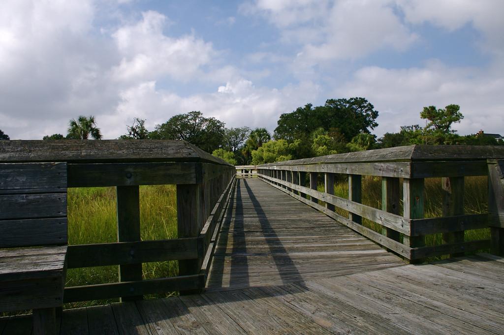 Daniel Island Marsh XV