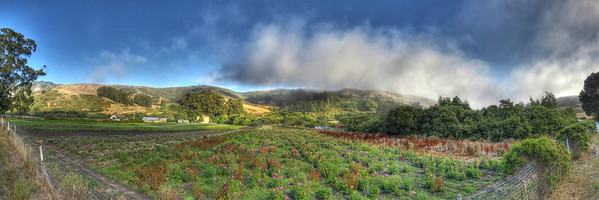 Purisima Creek Road Vista (15 shots; 5w x 1h x 3d)