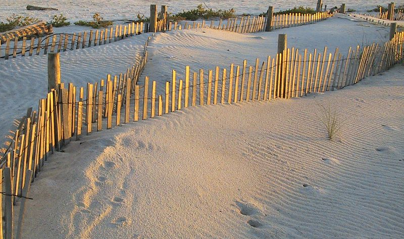 Evening sun on the beach and sand of Dauphin Island.