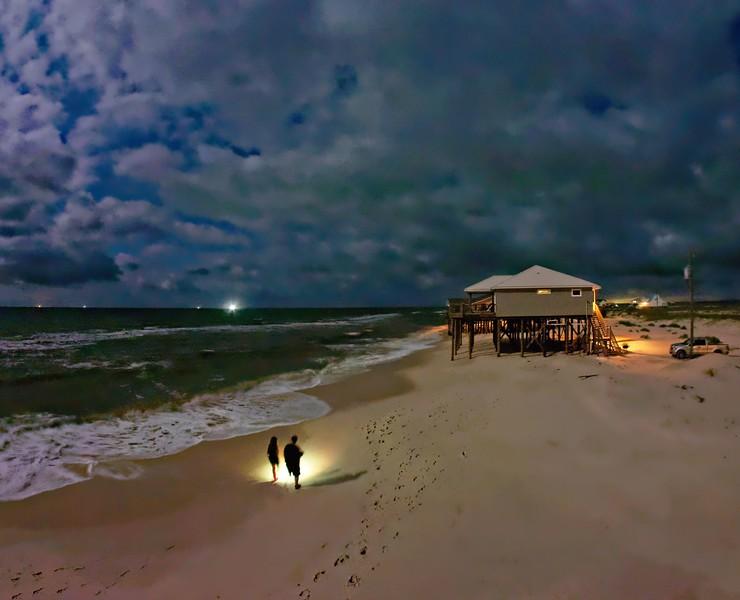 Crab Hunting in Moonlight
