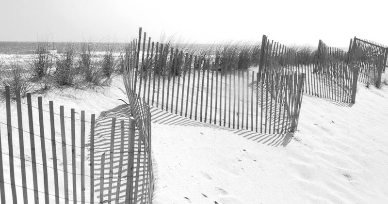 On the dunes.