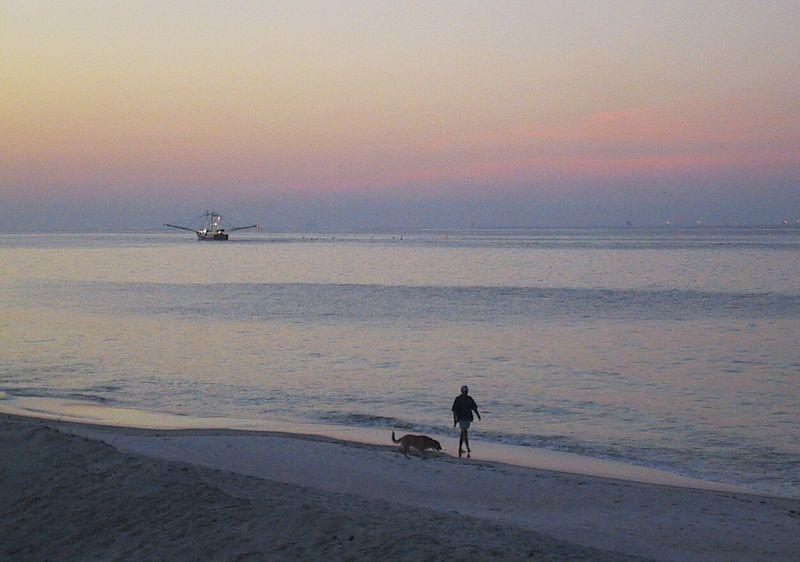 Dawn along the shore.