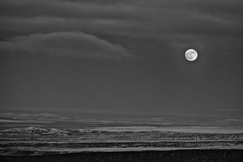 Moonrise over desert