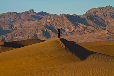 Sand dunes and the Amargosa mountains.