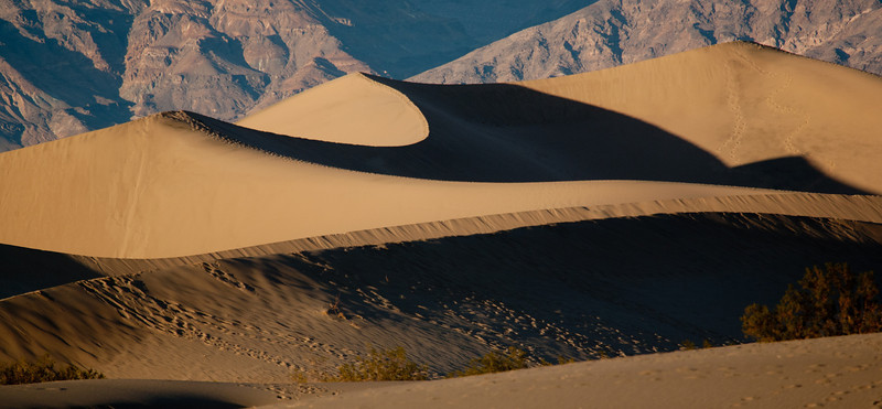 _MG_9863<br /> Sand Dunes, Stovepipe Wells
