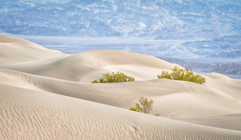 Sand Dunes by Stovepipe Wells