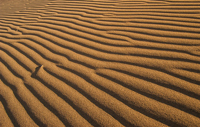"""Ripples in the Sands of Time"""