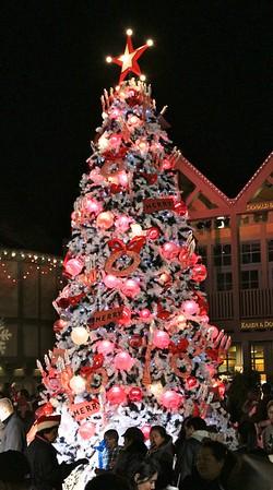 2011 December Nights 23