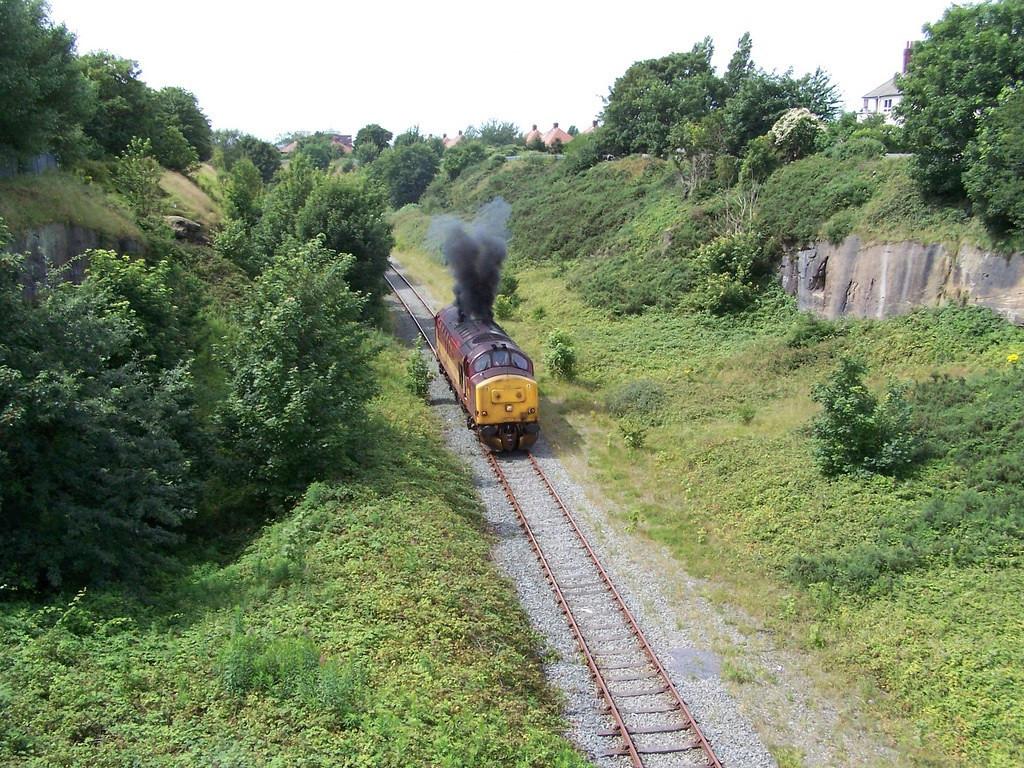 37410, Aintree. July 2007