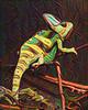 Sand Painting Chameleon