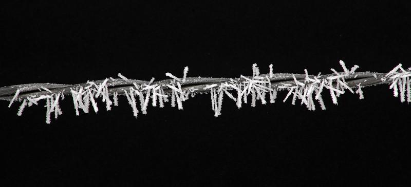 El verdadero alambre de puas en el invierno en Minnesota.