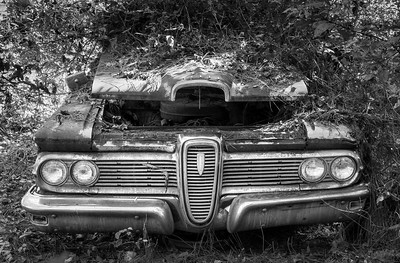 """""""Abandoned Edsel"""""""