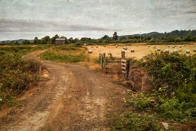 Coquille Farm