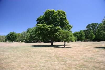 St. Mary's Park  (1/100 sec f/7.1 iso 200 polarizing filter)