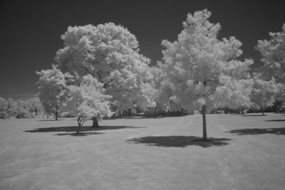 St. Mary's Park (infrared) (5 sec f/8 iso 1600 R72 filter)