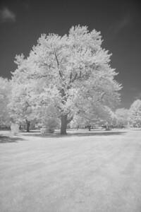 St. Mary's Park (same scene in infrared) (10 sec f/8 iso 1600 R72 filter)