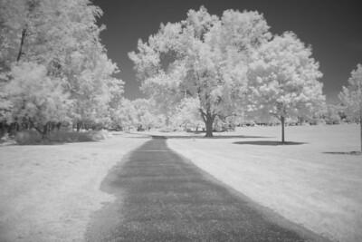 St. Mary's Park (same scene in infrared) (20 sec f/4 iso 200 R72 filter)