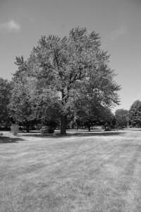 St. Mary's Park (b/w) (1/200 sec f/10 iso 200 no filter)