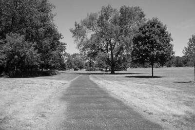 St. Mary's Park (same scene in b/w) (1/250 sec f/11 iso 200 no filter)