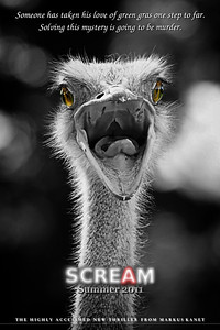 Fake Movieposter: SCREAM!