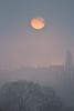 Sonnenaufgang im Nebel über der Wilhelma