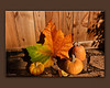 Sycamore Leaf and Pumpkins