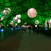 A lighted walkway at Discovery Green. I experimented with a few versions of this photo. This is the original.