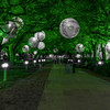 A lighted walkway at Discovery Green. I experimented with a few versions of this photo - this one emphasizing the green lighting.