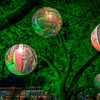View of the some of the globes at Discovery Green.