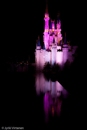 Cinderella Castle Reflection II - Disney World, Orlando, FL, USA