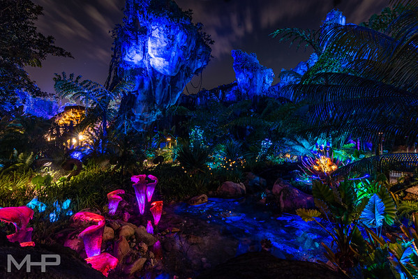A Calm Night on Pandora