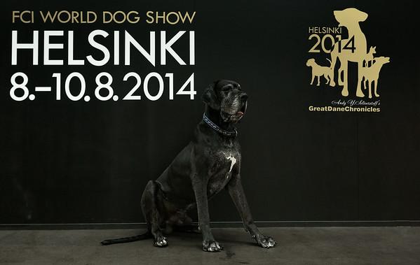 WORLD DOG SHOW 2014, Helsinki - Страница 2 GDC_6033-Edit-M
