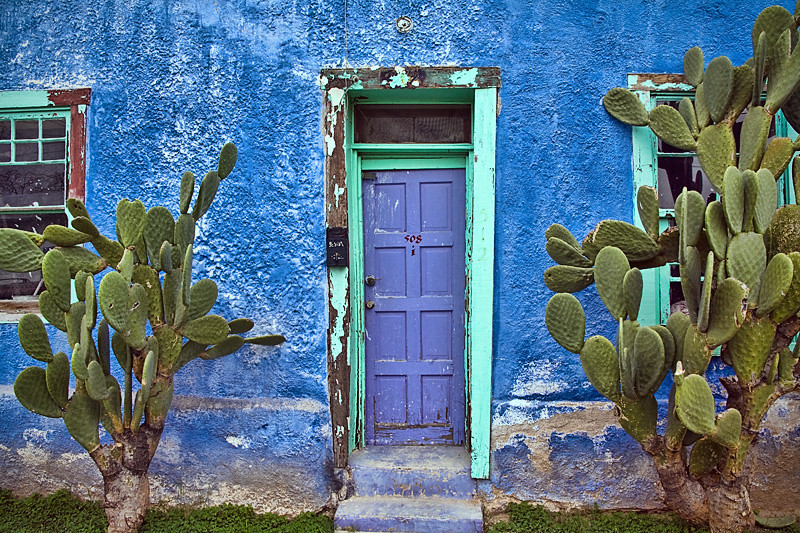 Narrow Blue Door & Cactus - Tucson