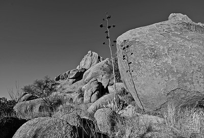 """Light & Shadow"", Dragoon Mountains, Az., 01/02/10"