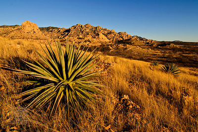 """Golden Hour"", Dragoon Mountains, Az., 01/02/09"
