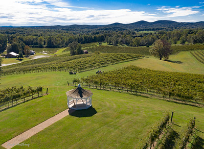 Three Sisters Vineyards