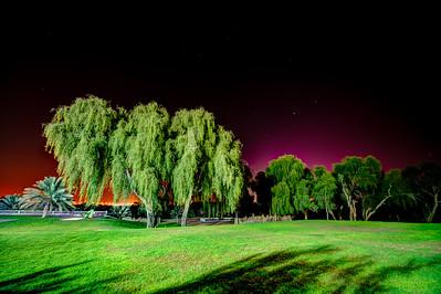Dubai. Al Awir. Ali's Farm at night.
