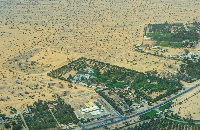 Aerial view of Ali's farm in Al Awir.