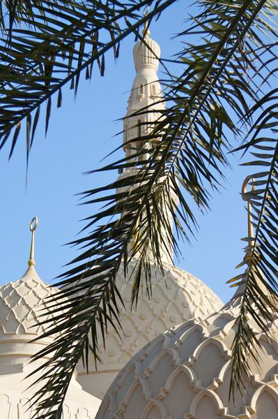 Palm across minaret - Jumeirah Mosque