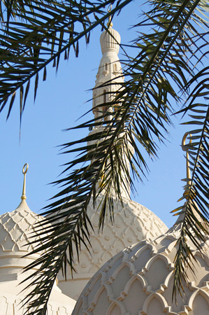 Palm across minaret - Jumeirah Mosque