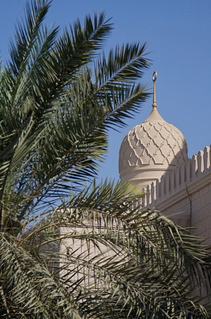 Palms and dome - Jumeirah Mosque