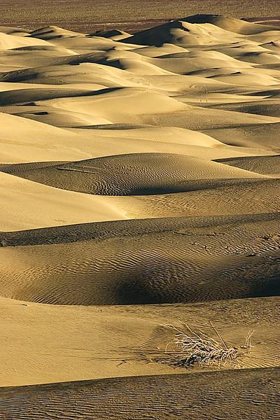 Death Valley dunes moonscape, California