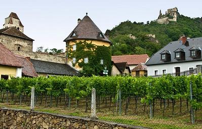 vineyardcastleinbackround