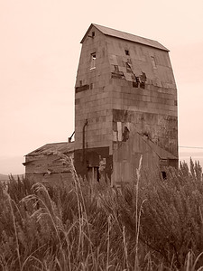Grain elevator with sagebrush in the foreground, Grainville, ID. 11.08. Sepia 9.0