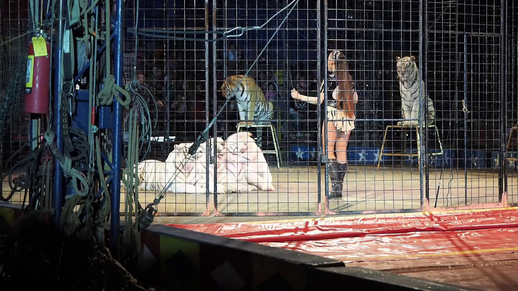1405_Cole Bros Circus_013