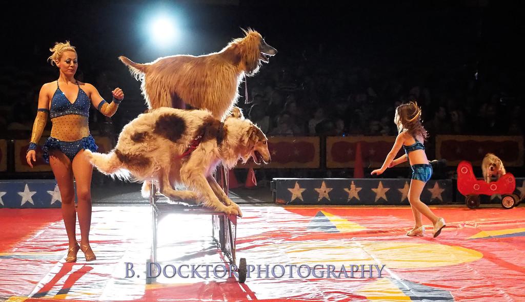 1405_Cole Bros Circus_038