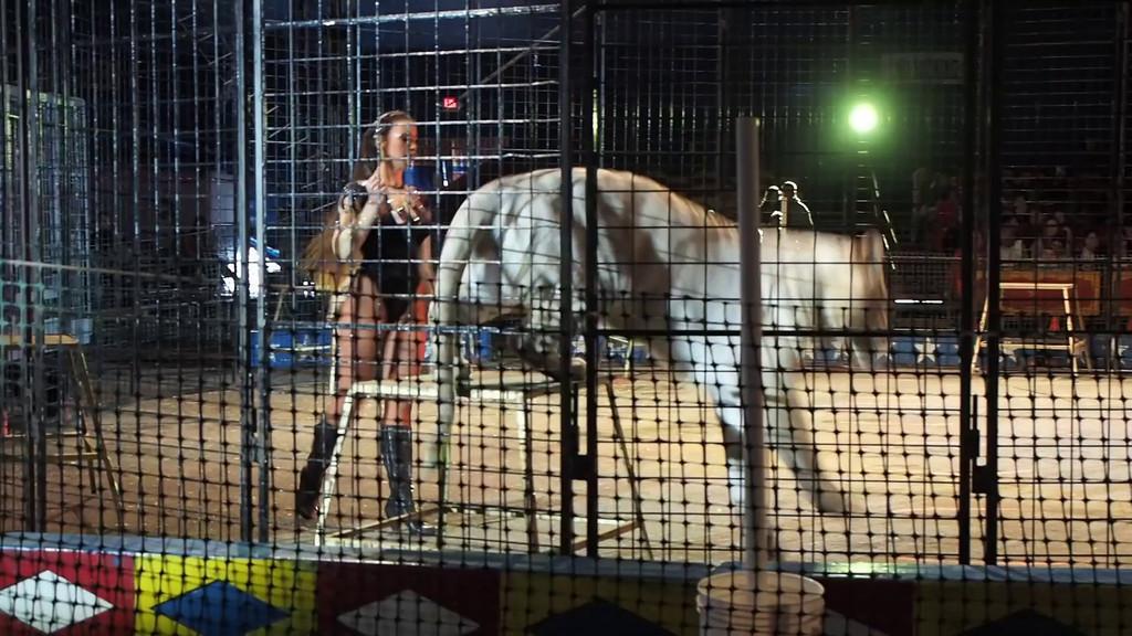 1405_Cole Bros Circus_018