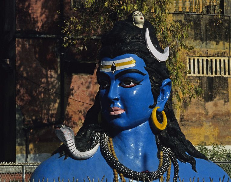 The goal is to increase our awareness until the separations we experience—the duality of subject and object that is the source of our suffering—vanish in the absolute consciousness, which is Shiva.  —Mark Dyczkowski,  <i> Yoga+ </i> <i> L2011 Shiva, Hardwar </i>