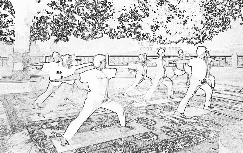 The main objective of hatha yoga is to create an absolute balance of the interacting activities and processes of the physical body, mind and energy. When this balance is created, the impulses generated give a call of awakening to the central force (sushumna nadi) which is responsible for the evolution of human consciousness. If hatha yoga is not used for this purpose, its true objective is lost.  — <i> Hatha Yoga Pradipika</i> <i>L1117</i>